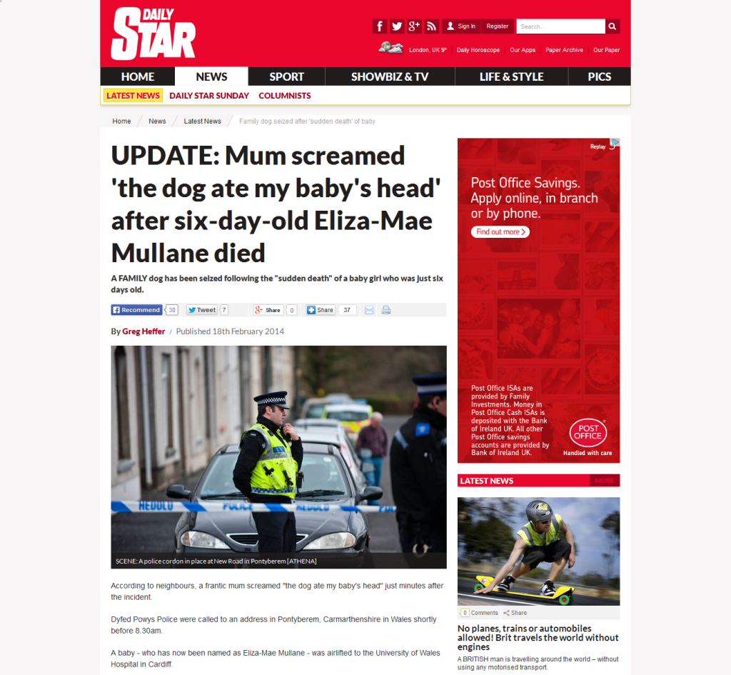 Dog mauled baby at Pontyberem - Daily Star Screen Grab